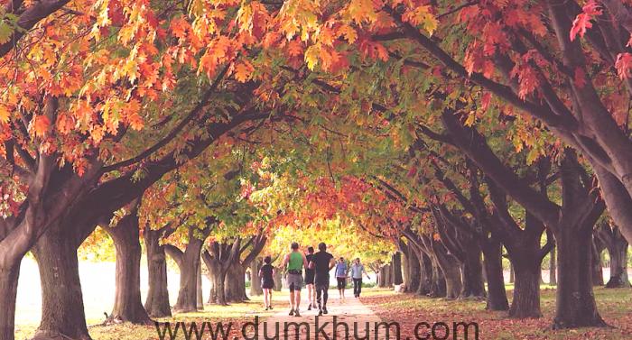 autumnlake