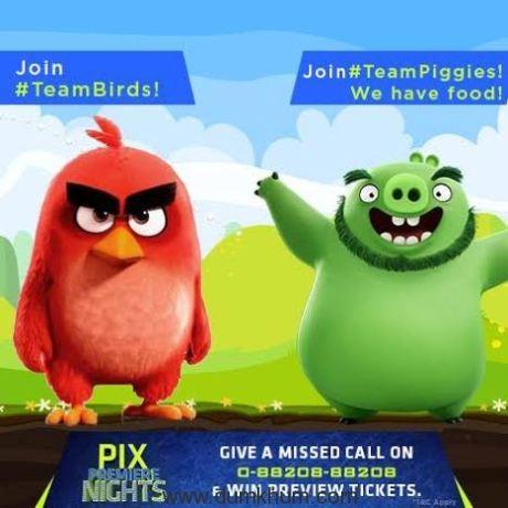 Sony PIX - The Angry Birds Movie (2).