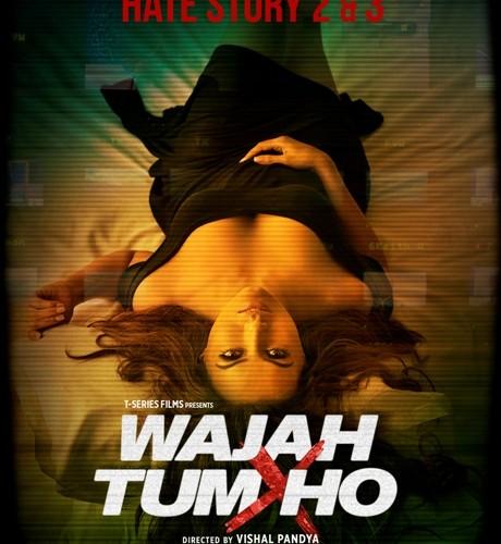 Teaser poster of 'Wajah Tum Ho' released