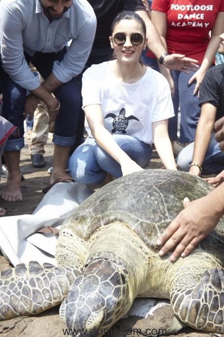 ALIA BHATT RELEASES RESCUED GREEN SEA TURTLE INTO THE SEA