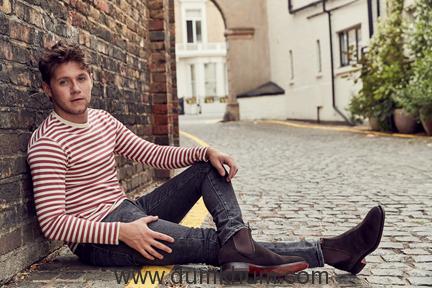 Niall Horan Credit David Needleman