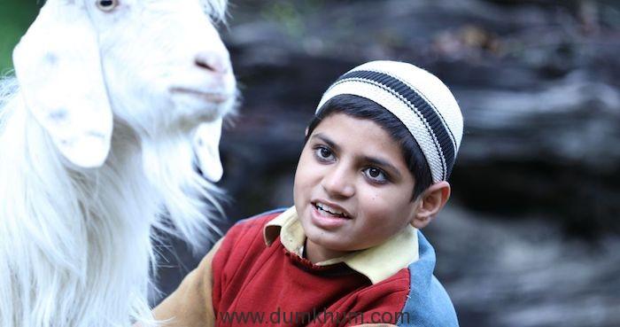 Harshit Rajawat (2)