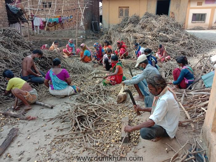 The Story of Shahapur's Katkari Tribe-